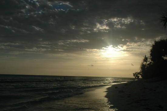 Heron Island at sunset 2