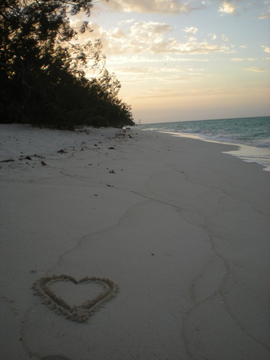 Heron Island at sunset